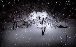 Screensaver neve che scende