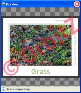 Programma Gratuito Cornici Foto Digitali