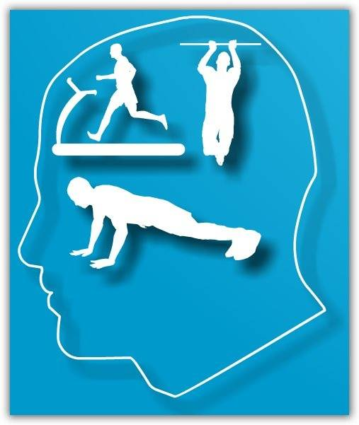 esercizi ginnastica per la mente