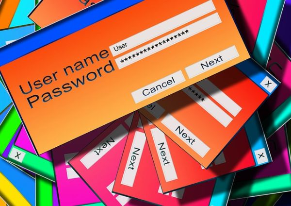 accesso informatico abusivo ladro di password