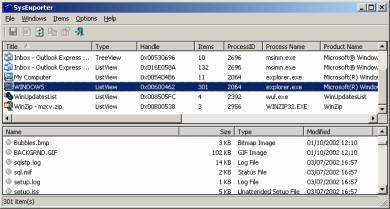 Selezionare e Copiare Appunti da Finestre Windows