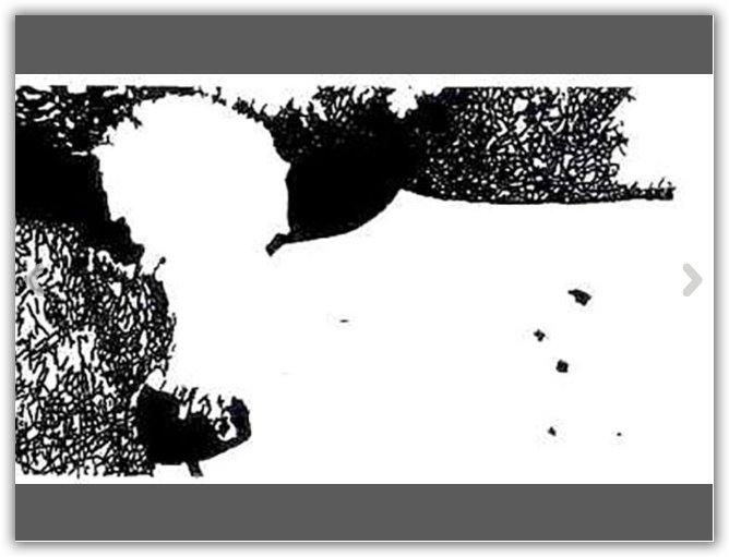 mucca nascosta nell'immagine
